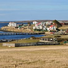 Falkland Islands 2