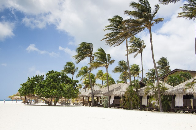 Manchebo Beach Resort, Aruba Island