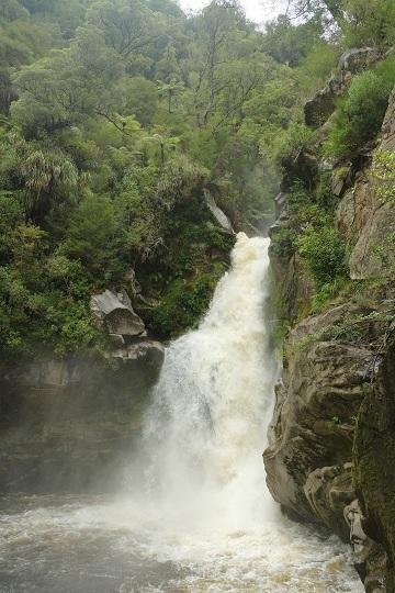 Wainui Falls
