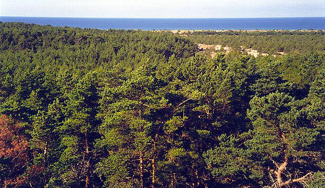 Sandön Island, Sweden
