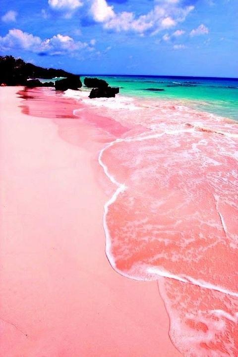 Tangsi Pink Sand Beach Lombok Island