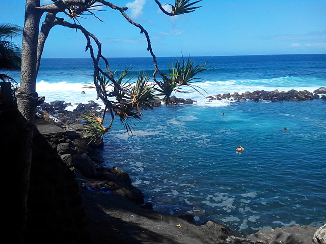 Reunion island Manapany Beach