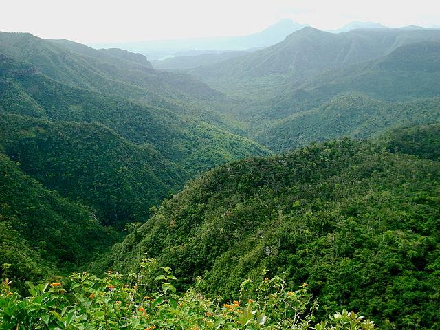 Black River Gorges National Park, Mauritius Island