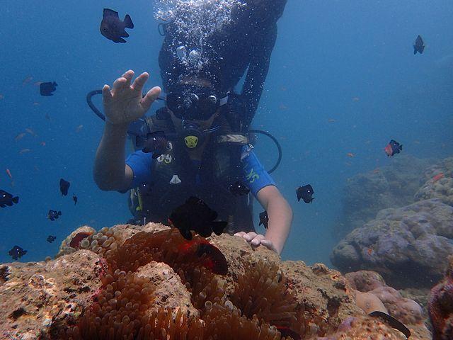 6. Scuba Diving Andaman Islands