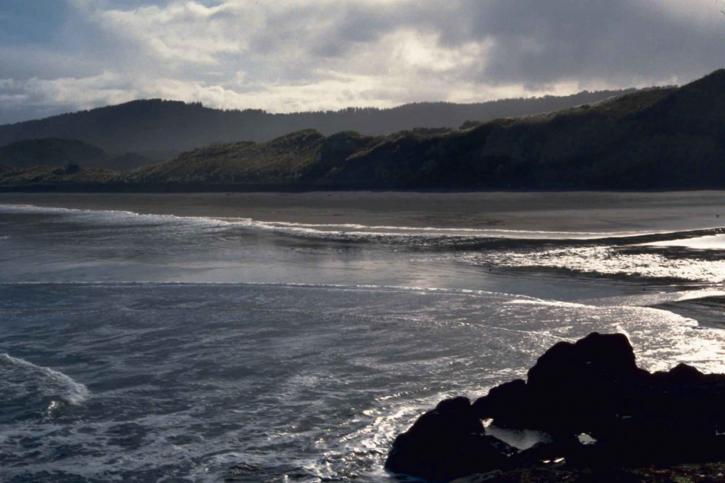 Muriwai Beach, New Zealand