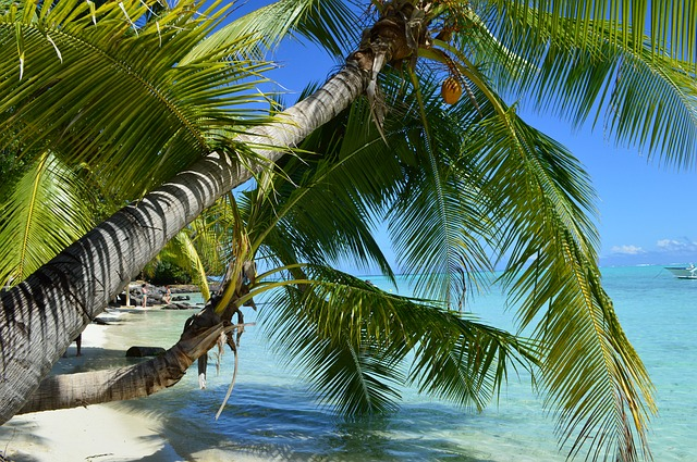 Bora-Bora, Romantic Island for Honeymooners