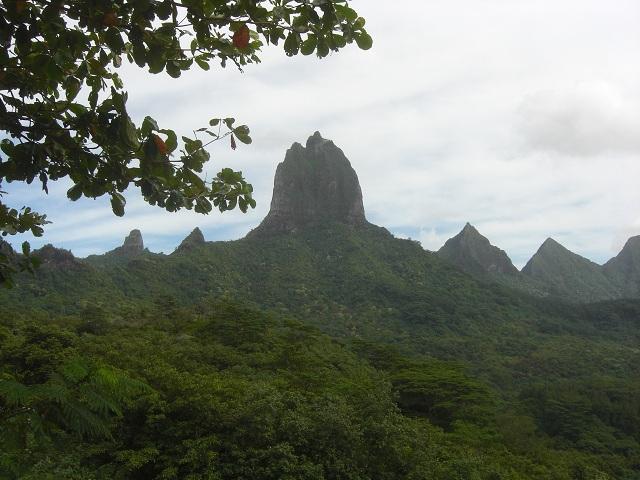 Belvedere French Polynesia