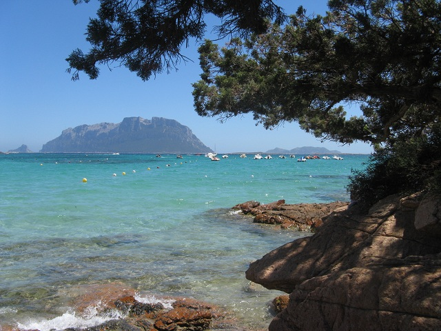 Sardinia Island Olbia Port Town