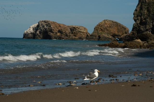 Santa Cruz most beautiful islands