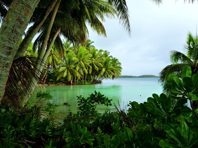 Uninhabited Islands Palmyra Atoll