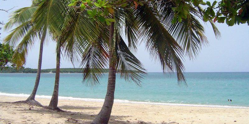 6 Caribbean Food Specialties in the Caribbean Islands