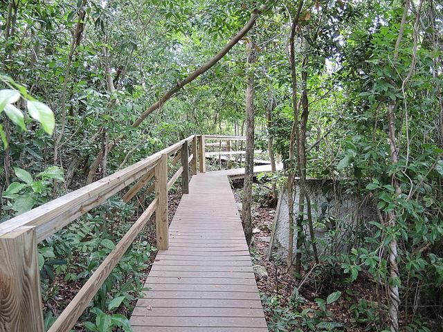 Lucayan National Park, Bahamas Islands