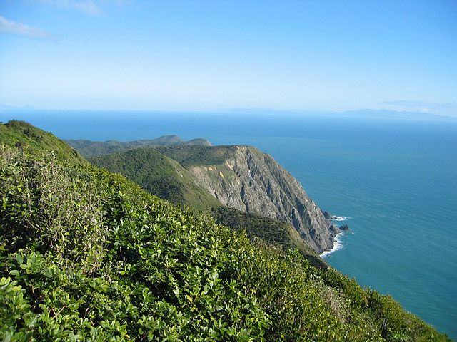 New Zealand Islands: Birding in Islands of New Zealand