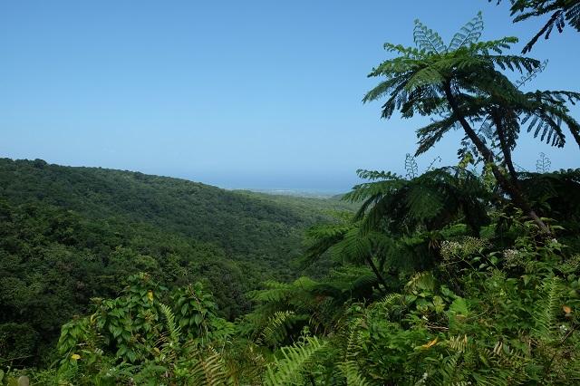 Guadeloupe Island