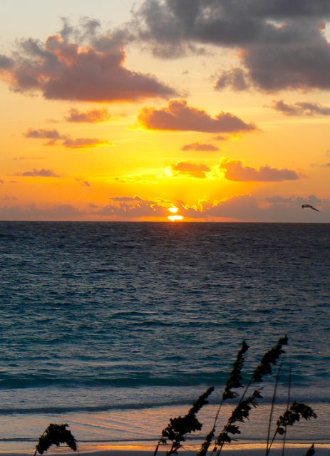 Harbour Island Sun Raise
